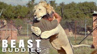 The Man Who Cuddles Lions   BEAST BUDDIES