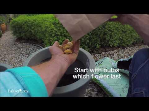 How To: etagebeplanting