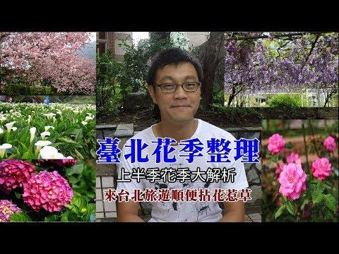 [臺北上半年花季景點解析] 規劃到臺北旅遊,該月份有什麼花季可以看呢?哪裡才看得到