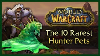 THE 10 RAREST UNOBTAINABLE HUNTER PETS - WOW 8.0.1