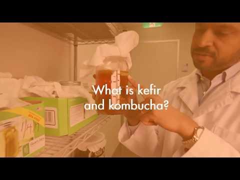 How To Make Healthy Kefir, Kombucha and Fermented Vegetables?