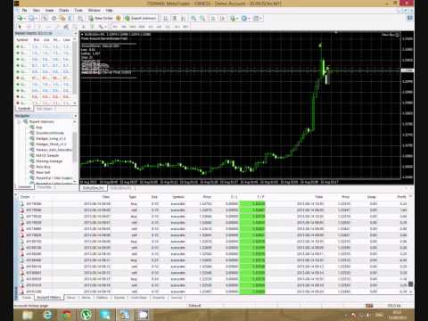 Forex robot that actually works
