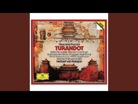 """Turandot / Act 3 : """"Nessun dorma"""""""