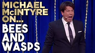 Different Ways To Cope With Bees And Wasps | Michael McIntyre