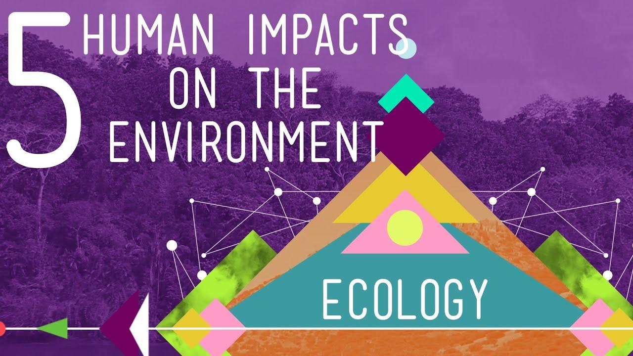 Human impact on the environment - Wikipedia