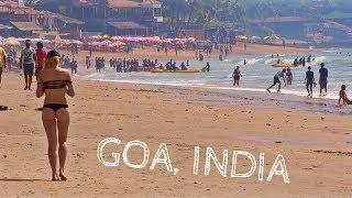GOA IS WILD | Travel India