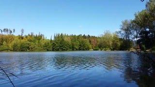 Phaeriss - Breath of nature I (4K nature video, relax music)