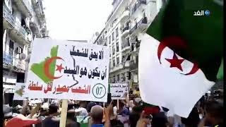 الجزائر.. مظاهرات حاشد بعدة مدن في الجمعة 23     -