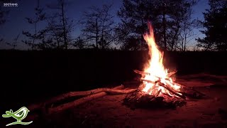 Relaxing Music & Campfire - Relaxing Guitar Music, Soothing Music, Calm Music - YouTube