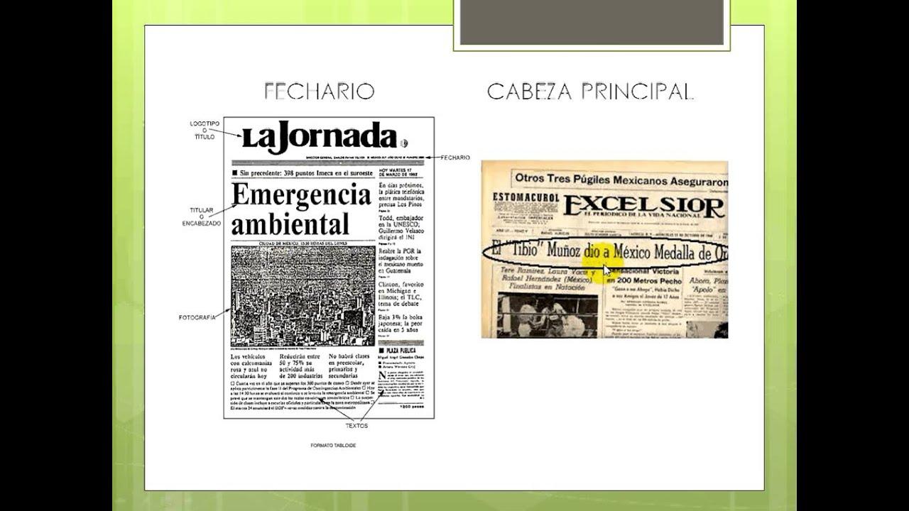 El periodico y su extructura externa.avi - YouTube