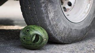 รถ vs มนุษย์แตงโม