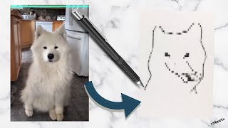 Time Warp Filter Compilation - Pet Edition // Drawing the End Result // #shorts