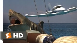 Jaws: The Revenge (6/8) Movie CLIP - Come and Get Me (1987) HD