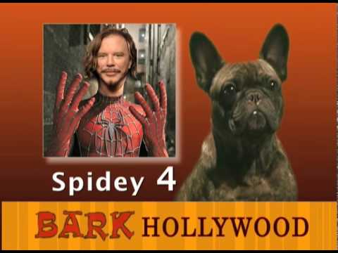 BARK HOLLYWOOD