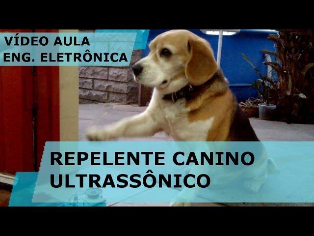 REPELENTE CANINO ULTRASSÔNICO | Vídeo Aula #138