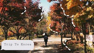 Trip to Korea|montage