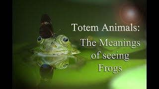 Totem Animals: The Meaning of Seeing Frogs: Symbolism(Fixed)