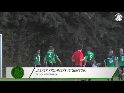 SC Schwarzenbek - Meiendorfer SV (2. Runde ODDSET-Pokal) - Spielszenen | ELBKICK.TV