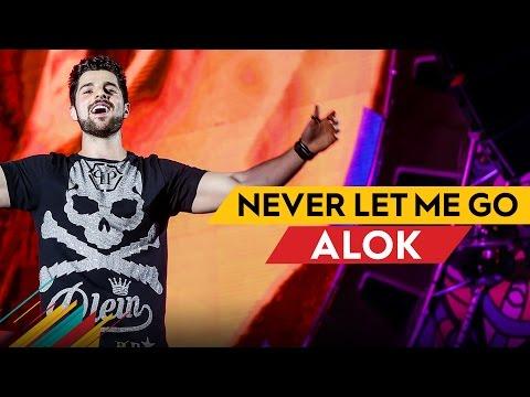 Never Let Me Go - Alok - Villa Mix Belo Horizonte 2017 ( Ao Vivo )