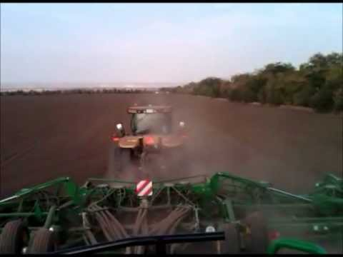 Cat and Airseeder in Russia