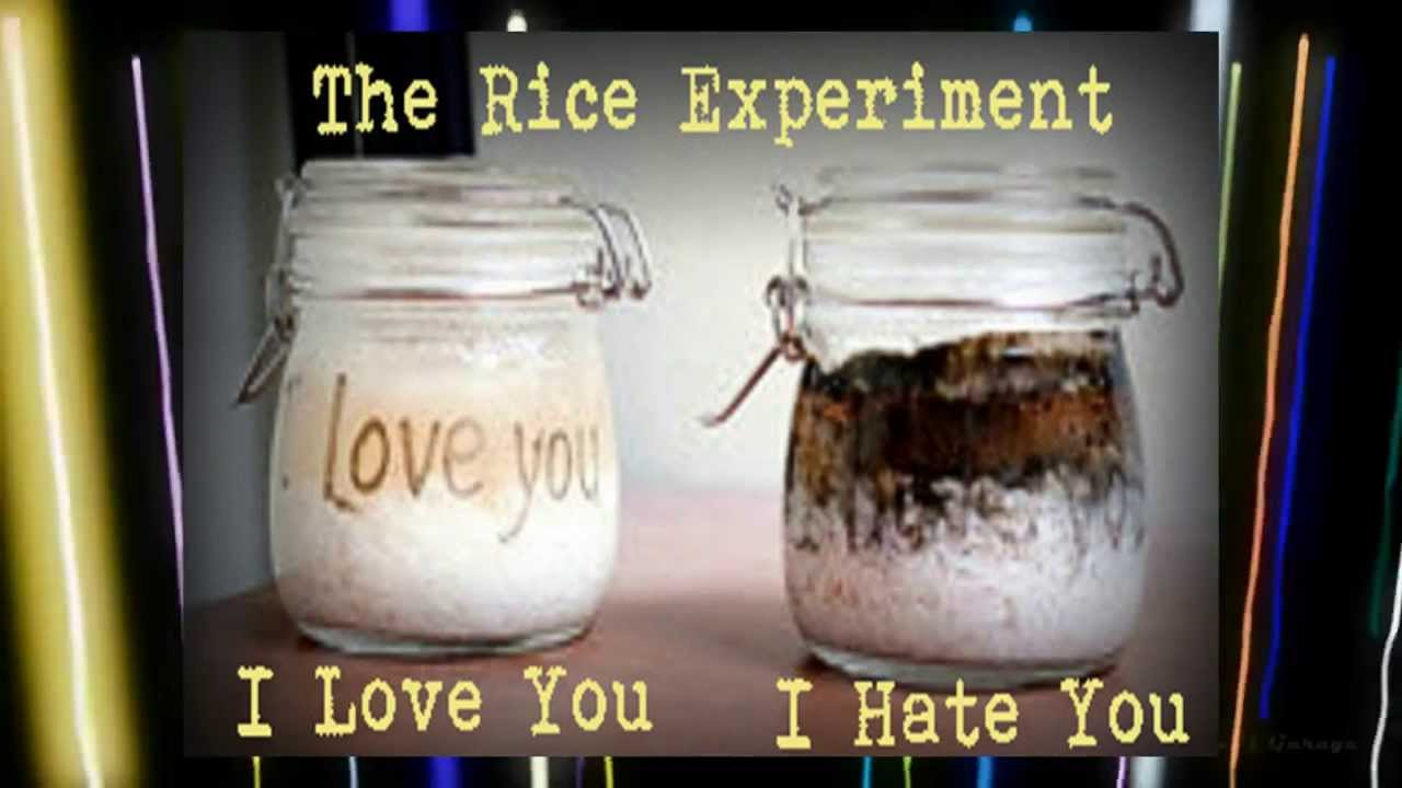 The Power Of Positive Thinking Masaru Emoto S Rice