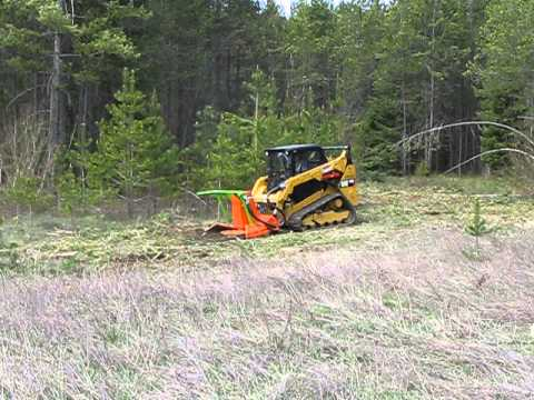 CAT 259D Standard Flow with a SS Mini Might Mulcher