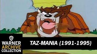 Taz-Mania  - Open