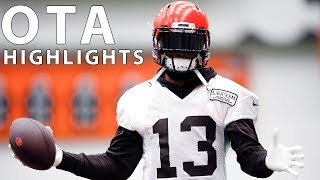 Organized Team Activities (OTA) Highlights!