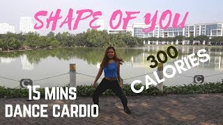 15 MINS DANCE CARDIO BURN 300 CALORIES with HOTTEST SONGS