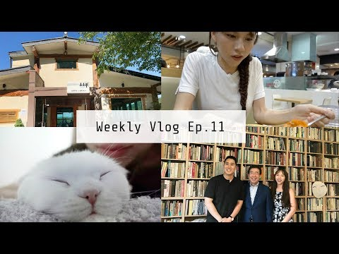 Weekly Vlog Ep.11 | 密訪首爾市長官邸, 巧遇老金前前前女友, 金媽牌蔘雞湯, 終於剪頭髮 | OopsAnnieNini
