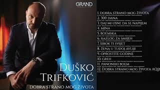 Dusko Trifkovic - 10 - Greh - ( Official Audio 2019 )