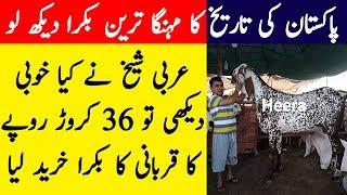 Kalonji ke fayde / Black seeds benefits in urdu / Kalonji ke faide