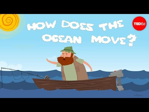 The motion of the ocean: The concentration gradient - Sasha Wright thumbnail