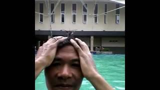 Sepasang kekasih bercinta di kolam renang
