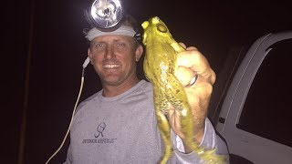 BULL FROG {catch clean and cook} Deer Meat For Dinner