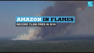 Amazon in flames: Record 73,000 forest fires in 2019