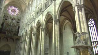 Building the Great Cathedrals - Science + Religion
