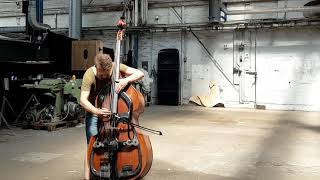 Joel Illerhag - Swedish Harp Bass - Swedish Harp bass