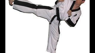 improve your taekwondo sidekick in 7 minutes