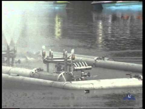 Aquatic Ballet floating structure /Ballet acuático con estructura flotante
