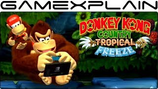 3 Joy-Con Idle Animations in DKC: Tropical Freeze on Nintendo Switch! (Diddy, Dixie, & Cranky)