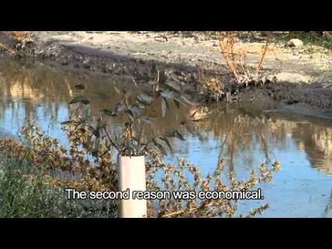 """Every Drop Matters"" A documentary on water governance in Arab States"