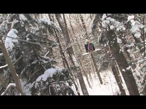 Arbortrek Canopy Adventures (Winter)