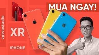 iPhone 11 đã ra, có nên mua iPhone XR không?