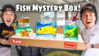 ORDERING FISH ONLINE FOR MY NEW SALTWATER POND!