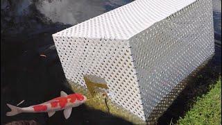 GIANT FISH-TRAP CATCHES MASSIVE COLORFUL FISH!!