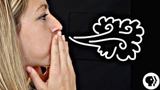 How to Make a Cloud in Your Mouth