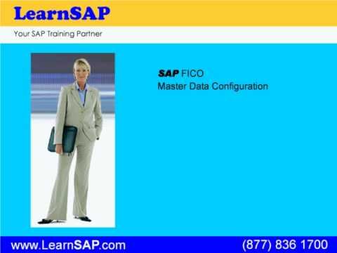 SAP FICO Training provided by the industry leaders. www.LearnSAP.com is your SAP training Partner