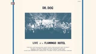 """Dr. Dog - """"Stranger"""" (Full Album Stream)"""