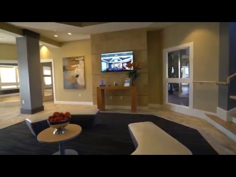 The Amber at Greenbrier Apartments | Chesapeake, VA